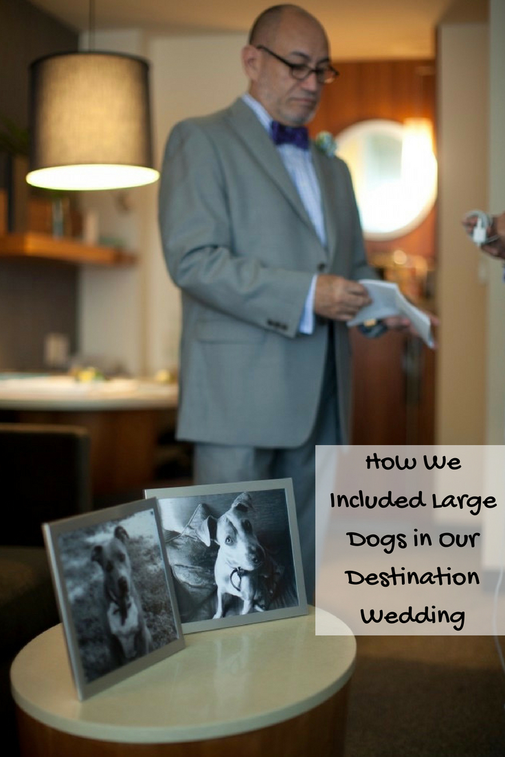 How We Included Large Dogs in Our Destination Wedding