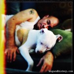 Edison the Deaf Dog, Dog & His Boy, Dog and His Boy, Deaf Dog Blog