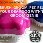 Grooming and Relaxation Tips for your Deaf Dog with Groom Genie