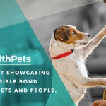 We're Off to the Purina #BetterWithPets Summit!