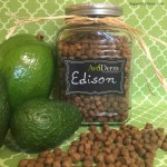 Why You SHOULD Feed Avocados To Your Dogs!   #AvoDermNatural