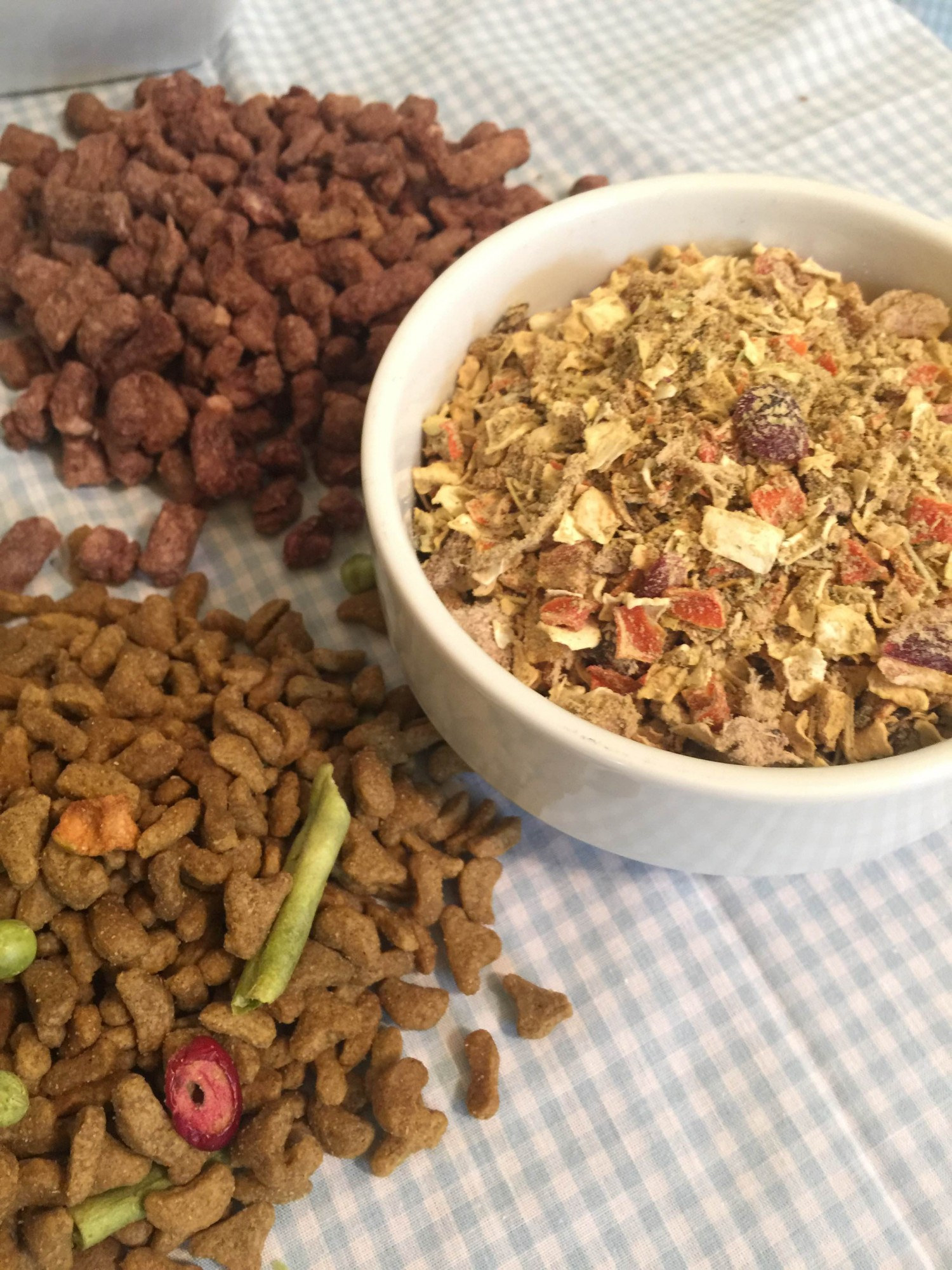 Choosing the Right Dog Food in Five Easy Steps